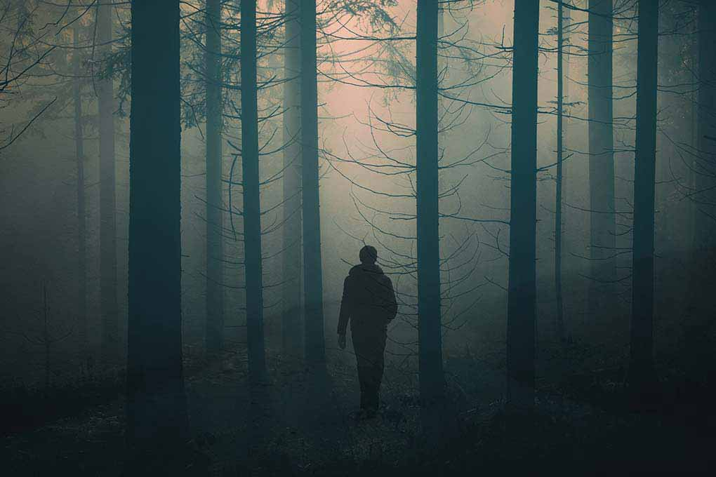 Dunkel im Wald Wandern