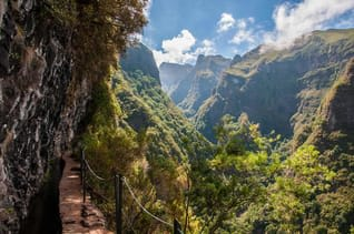 Steile Felswände und subtropische Vegetation an dem sicheren Wanderweg der Levada                                                      Caldeirao Verde