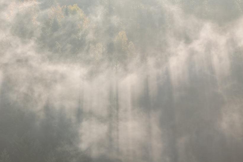 Nebel, Schnee und Dunkelheit können Sichtverlust beim Wandern herbeiführen