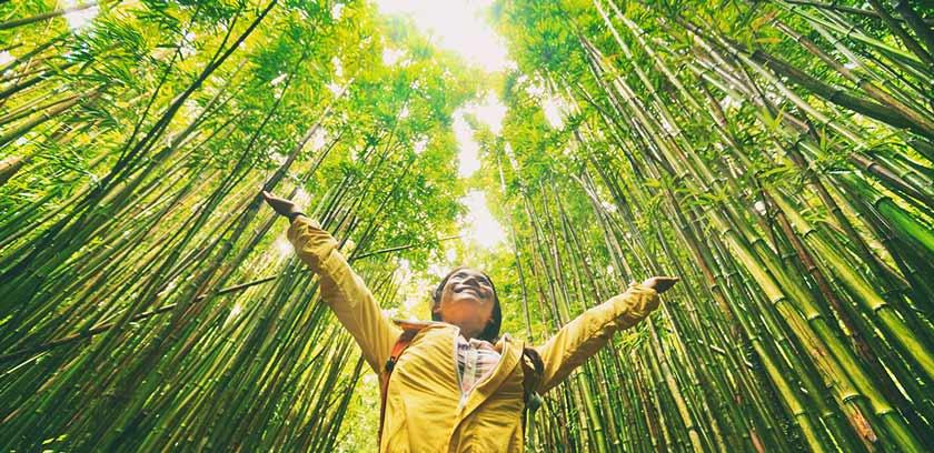 Wandern in der Natur und Effekte auf Gesundheit der Seele Psyche Verlaufen erschoepft Höhenangst Bergung Rettung