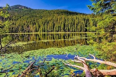 Wo wandern in Deutschland Bayerischer Wald Bayerwald Bergungsversicherung Wanderversicherung